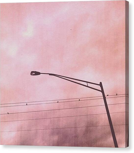 Jerseys Canvas Print - Six #birds #wires #streetlight #clouds by Red Jersey