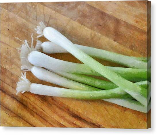 Six Scallions Canvas Print