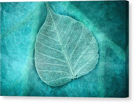 Skeletal Leaf Canvas Print