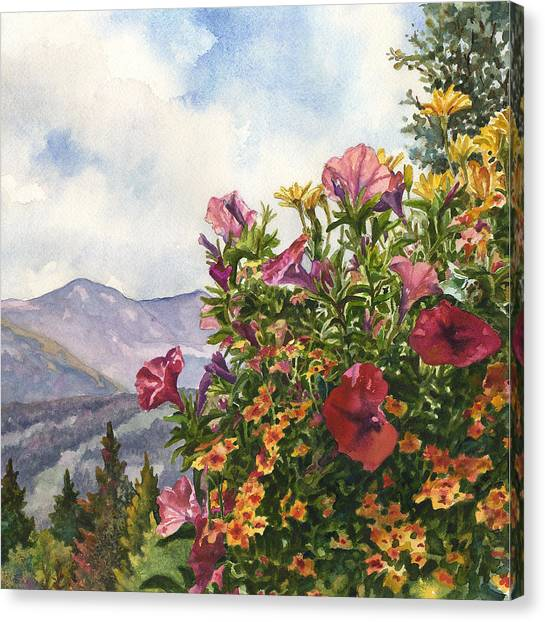 Colorado Canvas Print - Ski Slopes In Summer by Anne Gifford