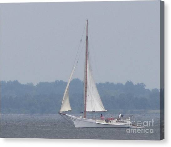 Skipjack On The Bay  Canvas Print by Debbie Nester