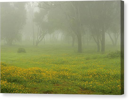 Skc 0835 Romance In The Meadows Canvas Print