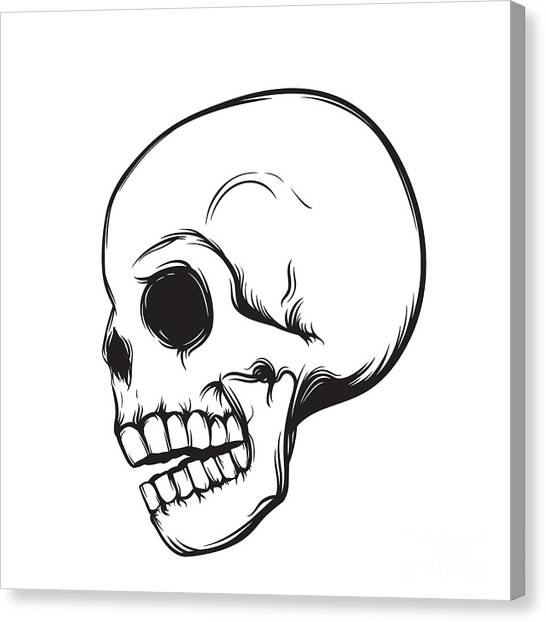 Star Trek Canvas Print - Skull, Side View, Isolated On White by Nexusby