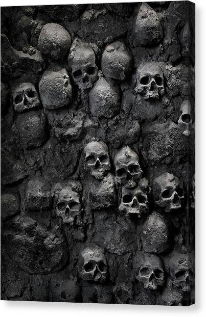 Skulls Canvas Print by Bruno Ehrs