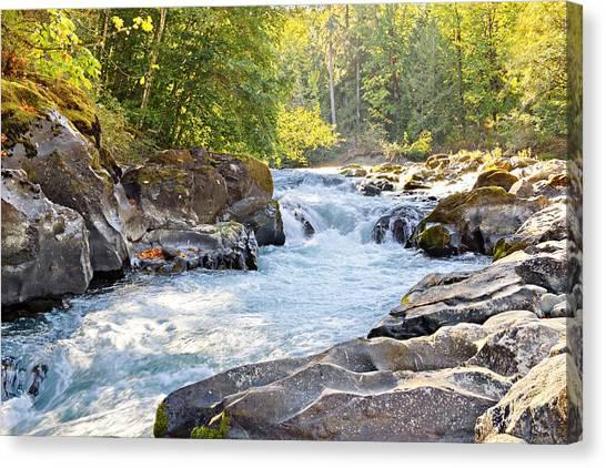 Skutz Falls At Cowichan River Provincial Park Canvas Print
