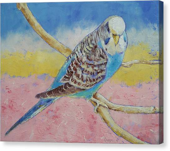 Parakeets Canvas Print - Sky Blue Budgie by Michael Creese