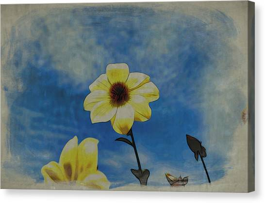 Sky Full Of Sunshine Canvas Print