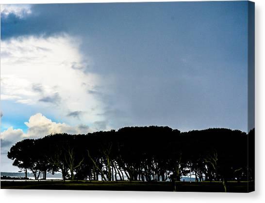 Sky Half Full Canvas Print