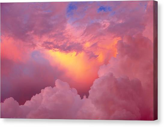 Sky I Canvas Print by Felipe Djanikian