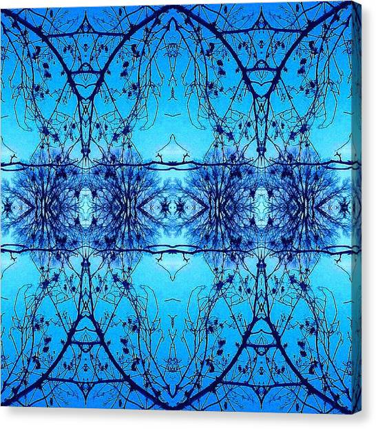 Sky Lace Abstract Photo Canvas Print