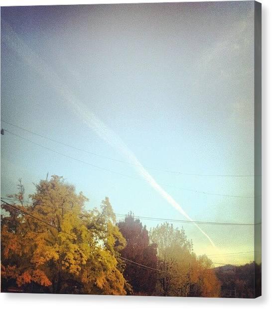 Autumn Leaves Canvas Print - Sky Lines by Jade Alexa Terando