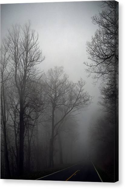 Skyline Drive In Fog Canvas Print