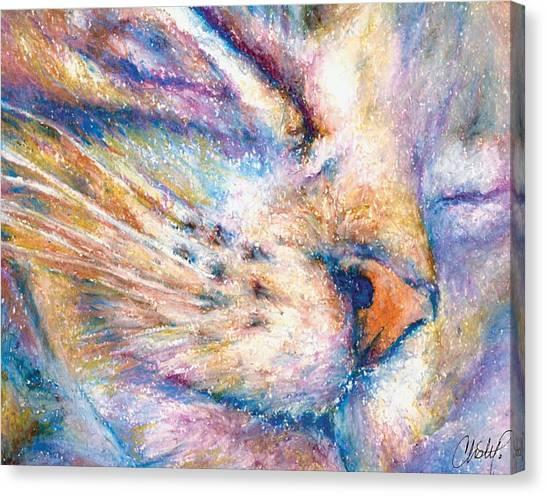 Sleeper Kitty Canvas Print