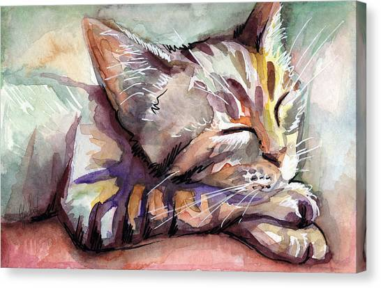 Kittens Canvas Print - Sleeping Kitten by Olga Shvartsur