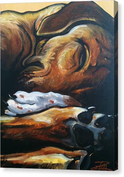 Sleeping Ridgeback Canvas Print