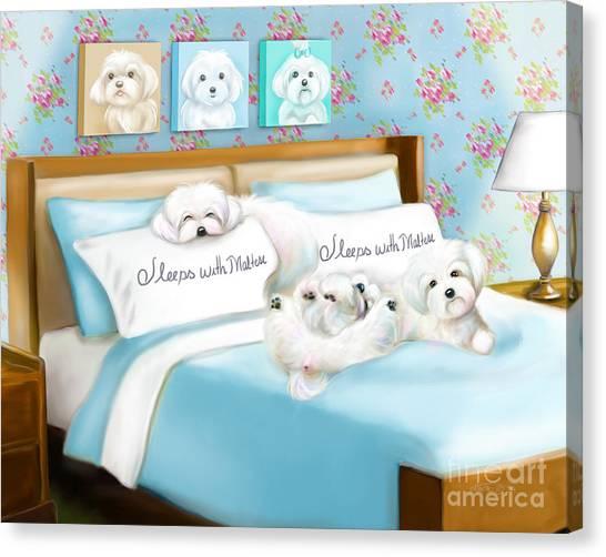 Sleeps With Maltese Canvas Print