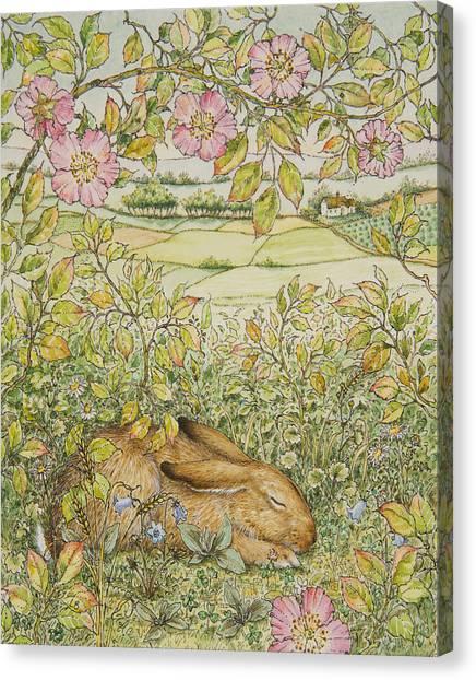 Sleepy Bunny Canvas Print