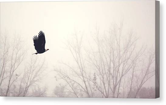 Slicing Through The Fog Canvas Print