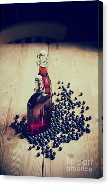 Wild Berries Canvas Print - Sloe Gin by Tim Gainey