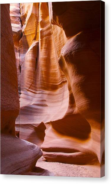 Slot Canyon 3 Canvas Print by T C Brown