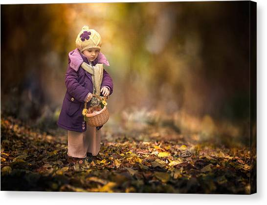 Fairy Canvas Print - Small Autumn Fairy by Stanislav Hricko
