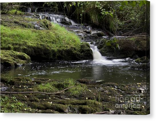 Small Falls On West Beaver Creek Canvas Print