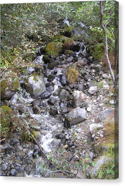 Small Glacial Stream Canvas Print