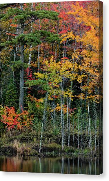 Marquette University Canvas Print - Small Lake With Autumn Color by Chuck Haney