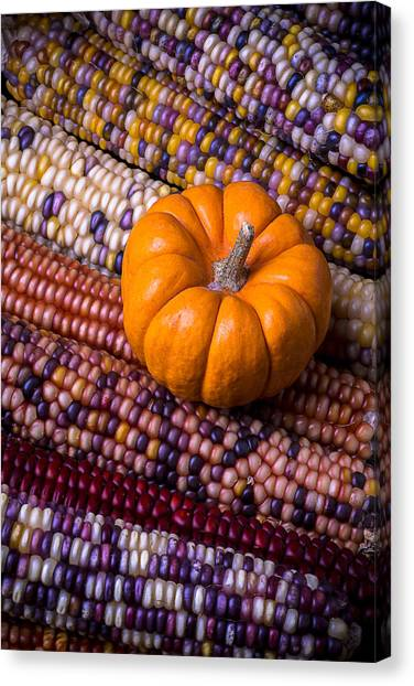 Indian Corn Canvas Print - Small Pumpkin With Indian Corn by Garry Gay
