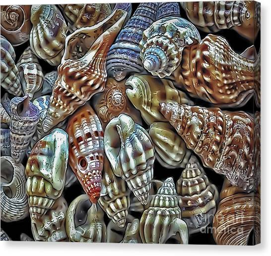 Small Sea Shell Collection Canvas Print