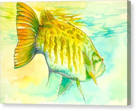 Bass Fishing Canvas Print - Smallie Patrol by Yusniel Santos
