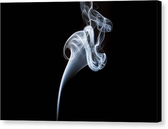 Smoke Flower Canvas Print by David Barker