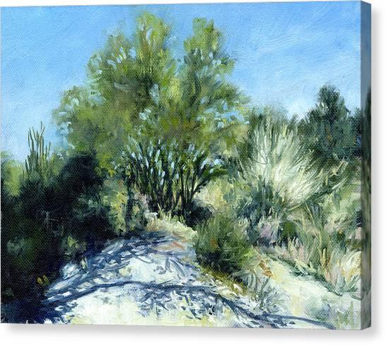 Smoke Tree Path Canvas Print by Stacy Vosberg