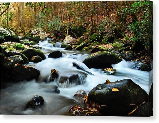 Smokey Mountain Creek Canvas Print