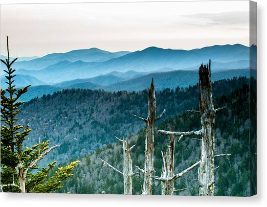 Smoky Mountain Overlook Canvas Print
