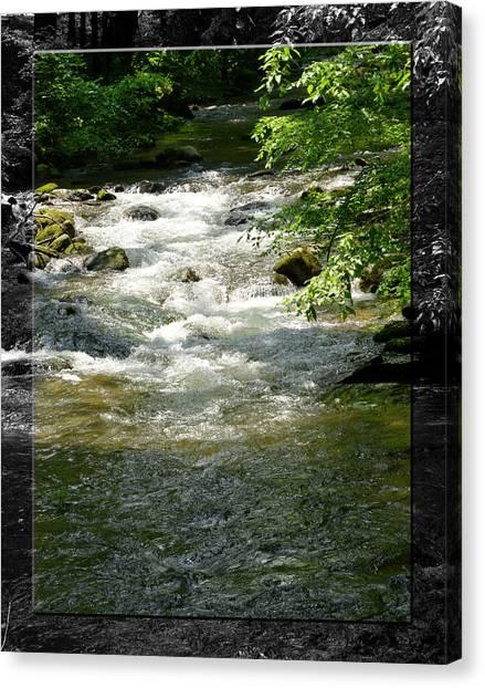 Smoky Mountain Stream - B Canvas Print