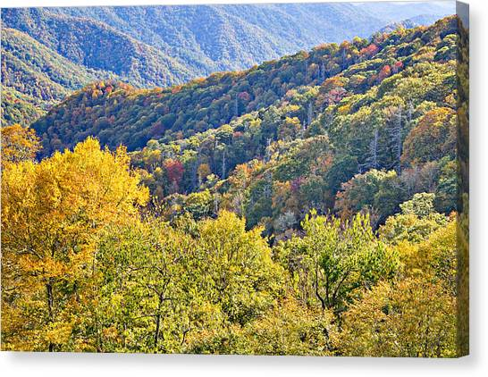 Smoky Mountain Valley Canvas Print