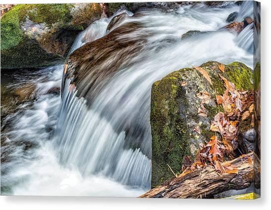 Smoky Mountain Stream 5 Canvas Print