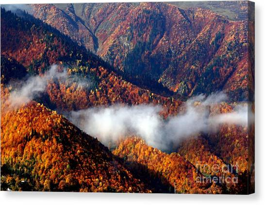 Smoky Mountains Canvas Print by Arie Arik Chen
