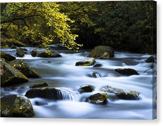 North Carolina Canvas Print - Smoky Stream by Chad Dutson