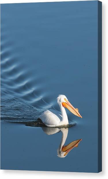 Lake Cruiser Canvas Print