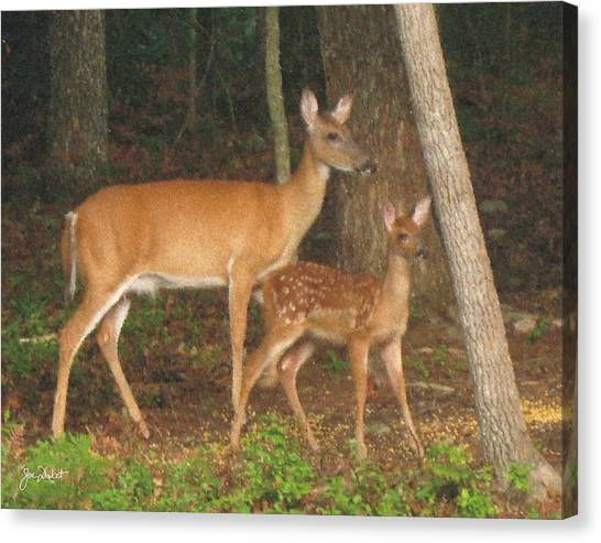Smudgie And Fawn Pastel Canvas Print
