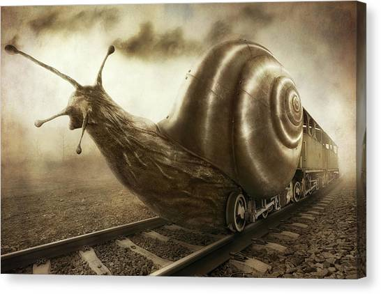 Humour Canvas Print - Snail Mail by Christophe Kiciak