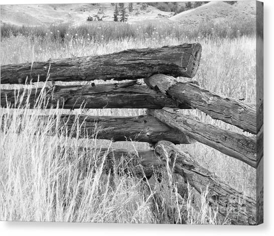 Canvas Print featuring the photograph Snake Fence  by Ann E Robson