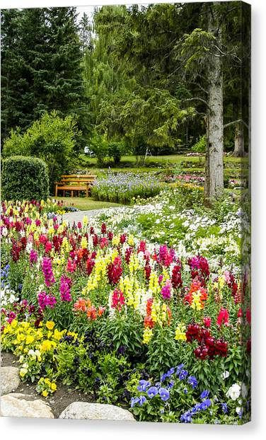 Snapdragon Garden Canvas Print