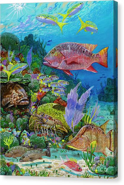 Spearfishing Canvas Print - Snapper Reef Re0028 by Carey Chen