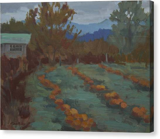 Pumpkin Patch Canvas Print - Snohomish Pumpkin Patch by Diane McClary