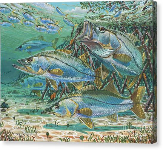 Florida Wildlife Canvas Print - Snook Attack In0014 by Carey Chen