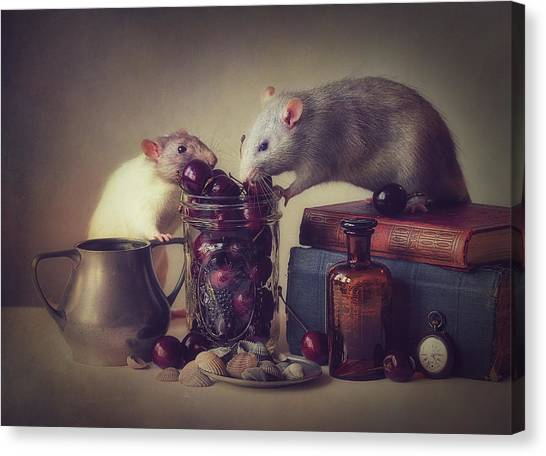 Mice Canvas Print - Snoozy And Jimmy by Ellen Van Deelen