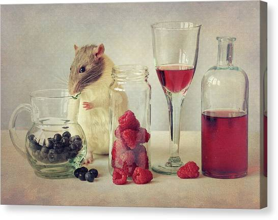 Raspberry Canvas Print - Snoozy Loves To Eat by Ellen Van Deelen
